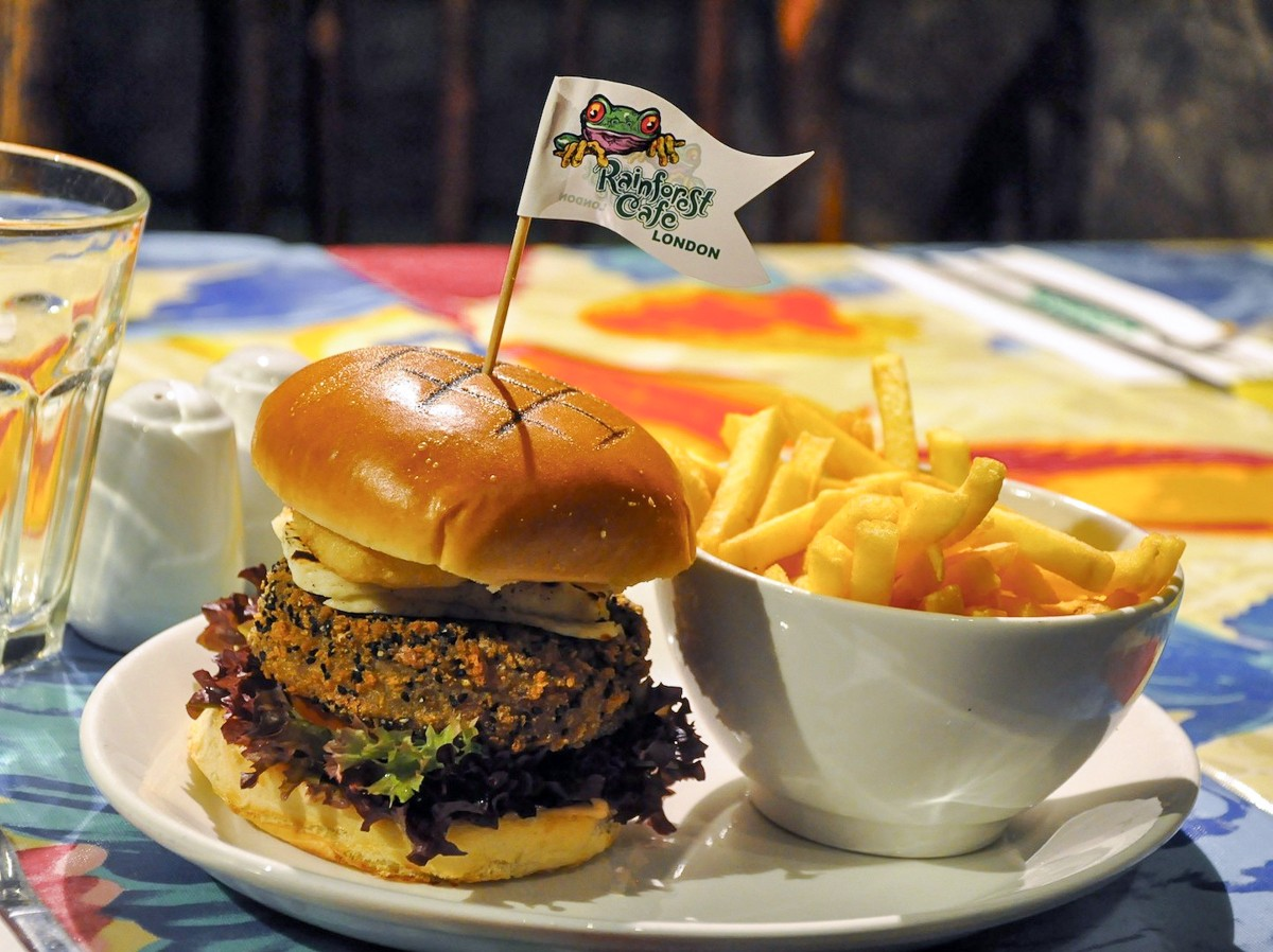 Rainforest Cafe Food Allergy Menu